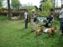 29.04.2012 Hundetraining