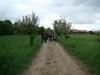 2012-05-06_hundetraining_061