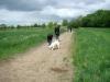 2012-05-06_hundetraining_095