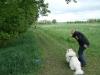2012-05-06_hundetraining_099
