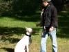 2012-09-30_hundetraining_06