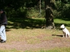 2012-09-30_hundetraining_07