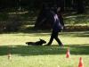 2012-09-30_hundetraining_32