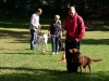 2012-09-30_hundetraining_83